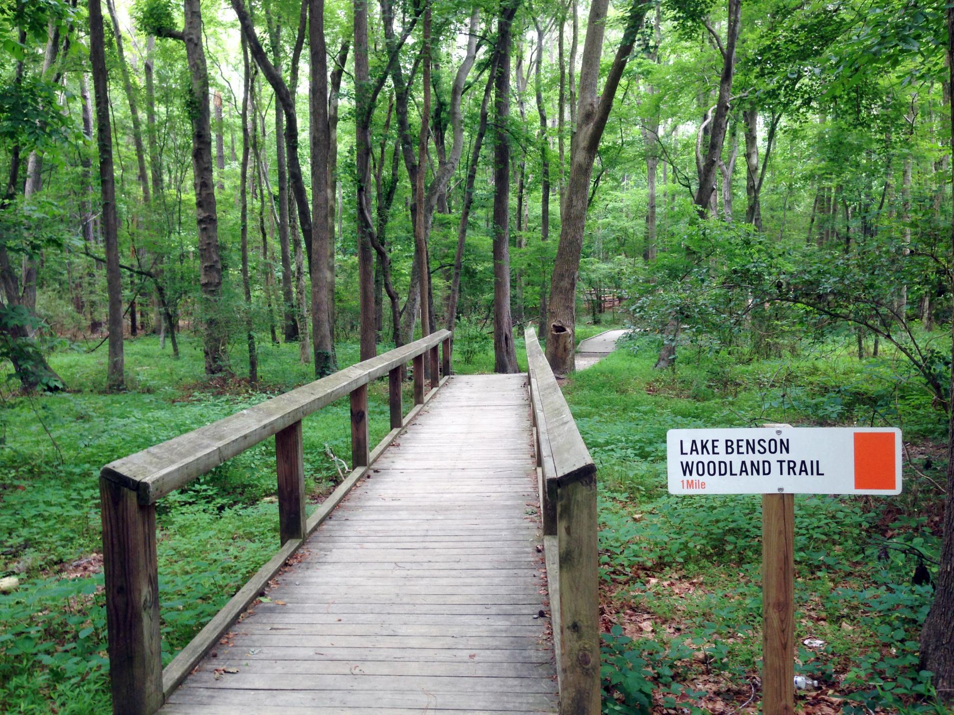 lake benson trail_original